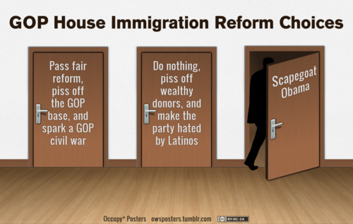 House Immigration Reform Choices